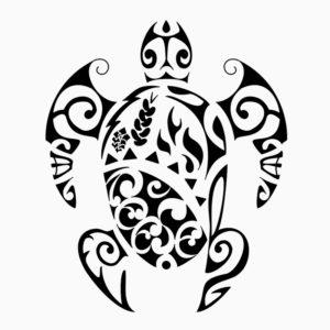 Turtle Mania La Tortue Un Reptile Represente Dans L Art Et La Culture